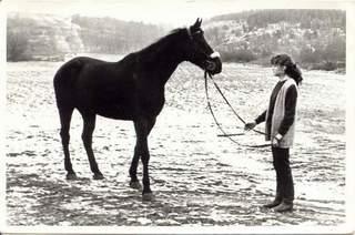 Koń Tratwa. Zdjęcie z archiwum Sławomira Aleksandrowicza (1983 r.)